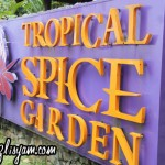 Tropical Spice Garden