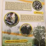 Meneroka Potensi Buah Dabai Sarawak