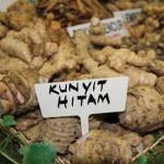 Pengusaha Produk Herba @ MAHA2010