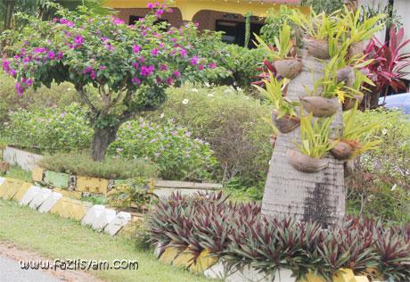 Pokok Bunga Dan Herba Ditanam Di Halaman Ada Juga Buah Buahan Kerana Rumah Kampung