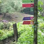 Tumbuhan di Tropical Spice Garden