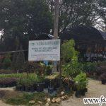 Nursery Sungai Buloh