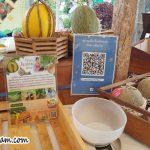 Jualan Buah Buahan @ Agricultural Fair Thailand 2018