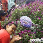 Bunga Butang